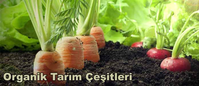 organik tarım çeşitleri